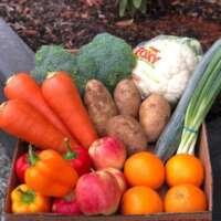 Small Produce Box
